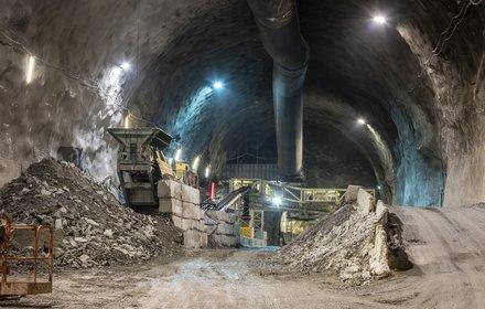Mules - logistic cavern